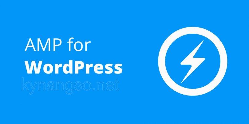 google amp, AMP là gì ? Cách cài đặt Google AMP lên Website WordPress của bạn!