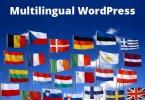 Wordpress đa ngôn ngữ, Cách tạo trang WordPress đa ngôn ngữ với plugin Polylang từ A-Z